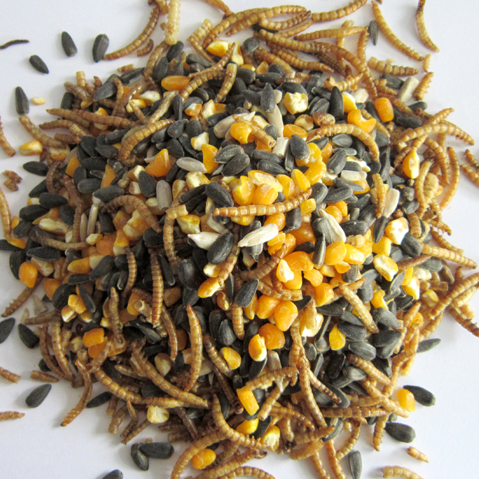 Seed & Mealworm Blend (for Chicken)